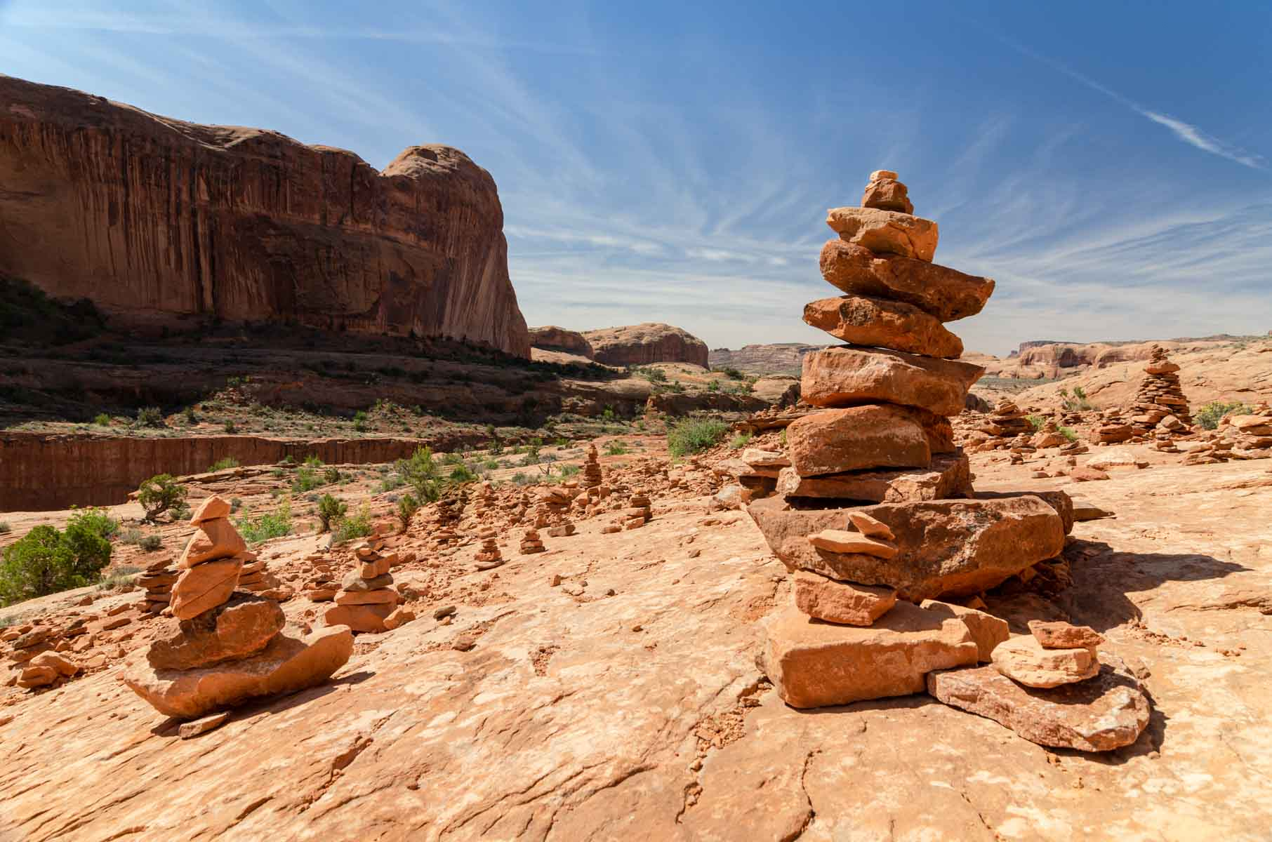 A field of balancing rocks at Arches National Park